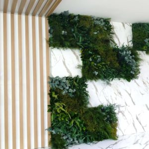 Gradina verticala din plante naturale-stabilizate. Herbalife. Chisinau, Moldova