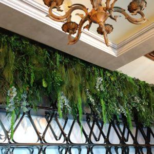 Plante stabilizate